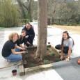 El dissabte passat vam poder celebrar el Camp de Treball al Rusc! És una activitat anual, amb l'objectiu de compartir un dia al Rusc amb amics i familiars i donar […]