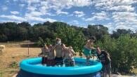 Voleu saber com han passat els primers dies de calor el grup d'El Petit Príncep? Això és el que ens expliquen!